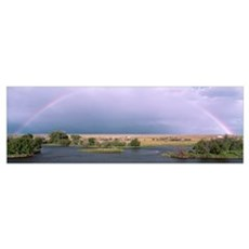 Rainbow Big Hole River MT Poster