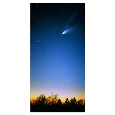 Comet (Photo Illustration) Poster