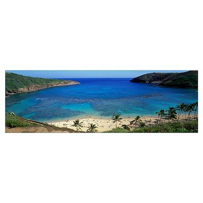 Beach at Hanauma Bay Oahu Hawaii Poster