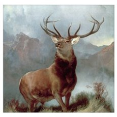 Monarch of the Glen, 1851 (oil on canvas) Poster
