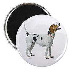 Foxhound Magnet