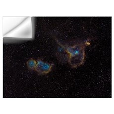 The Heart and Soul Nebulae Wall Decal