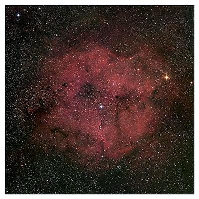 The large IC 1396 emission nebula complex Poster