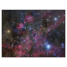 The Vela supernova remnant Poster