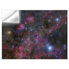 The Vela supernova remnant Wall Decal