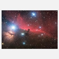 Horsehead Nebula and Flame Nebula in Orion