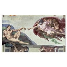 Sistine Chapel Ceiling (1508 12): The Creation of Framed Print