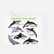Dolphins of the World Greeting Card