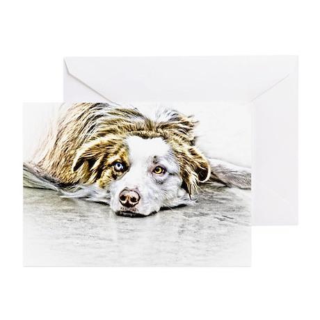 AUSTRALIAN SHEPHERD - DOG Greeting Cards (Pk of 20