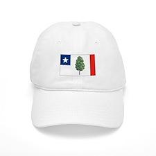 Mississippi Magnolia Flag Baseball Cap