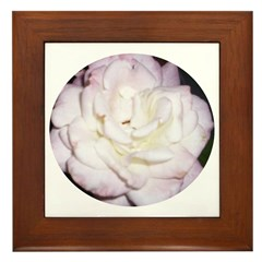 Magenta & Pink Roses Framed Tile