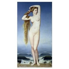 The Birth of Venus (oil on canvas) Poster
