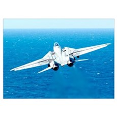An F14D Tomcat taking off Poster
