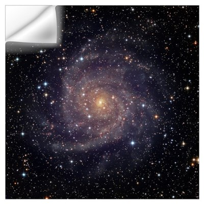 IC 342 an intermediate spiral galaxy in the conste Wall Decal