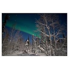 Green Aurora at Prelude Lake Yellowknife Northwest Poster