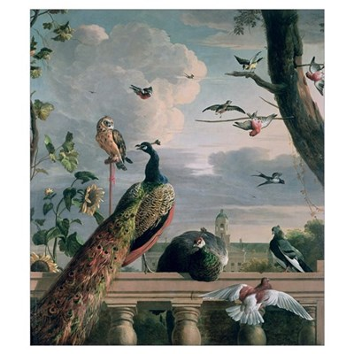 Palace of Amsterdam with Exotic Birds Poster