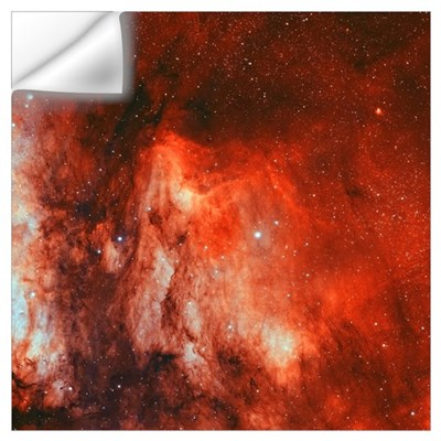 The Pelican Nebula Wall Decal
