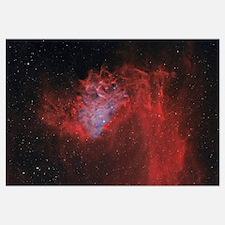 The Flaming Star Nebula