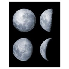 Four phases of the moon Poster