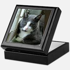 Grey and White Cat Keepsake Box