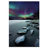 Aurora borealis polar bear Framed Prints