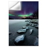Aurora borealis polar bear Wall Decals