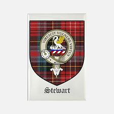 Stewart Clan Crest Tartan Rectangle Magnet (10 pac