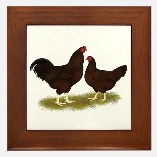 Buckeye Chickens Framed Tile