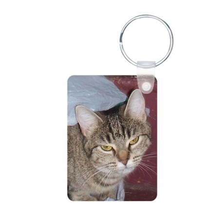The 2 Faces of Georgie Aluminum Photo Keychain