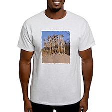 """""""Meerkat #2"""" Ash Grey T-Shirt"""