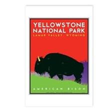 Yellowstone NP: Bison Postcards (Package of 8)