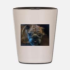Cute Bulldog wall Shot Glass