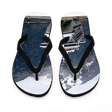 Cruise Alaska Flip Flops