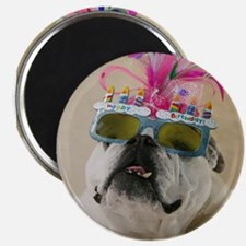 "Happy Birthday 2.25"" Magnet (10 pack)"