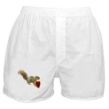 Squirrel with Candy Box Boxer Shorts