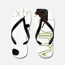 Extra Dirty Flip Flops