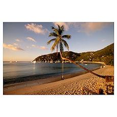 Cane Garden Bay Tortola British Virgin Islands Poster