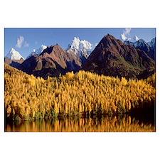 Reflection of trees on a lake, Chugach Mountains,