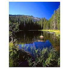 California, Yosemite National Park, Reflection of  Poster