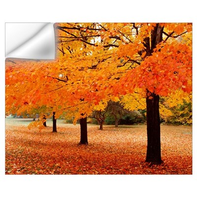 New York State, Erie County, Chestnut Ridge Countr Wall Decal