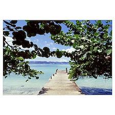British Virgin Islands, Jost Van Dyke Island, Grea