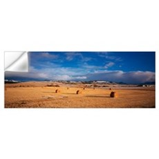 Hay bales in a field, Montana Wall Decal