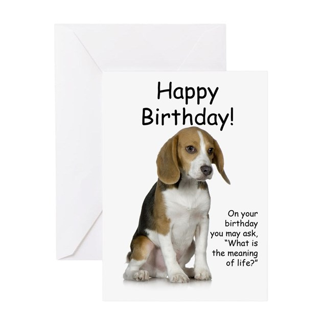 Beagle Birthday Card By Shopdoggifts