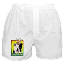 Birthday Cupcake - Border Collie Boxer Shorts