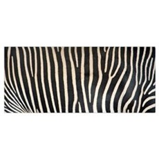 Grevey's Zebra Stripes Poster