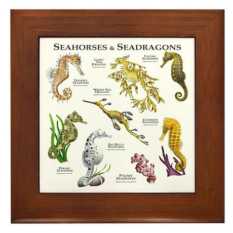 Seahorses & Seadragons Framed Tile