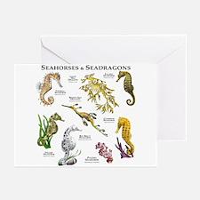 Seahorses & Seadragons Greeting Cards (Pk of 20)
