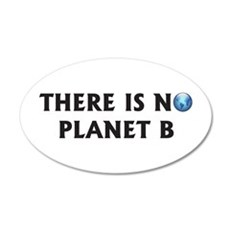There Is No Planet B 22x14 Oval Wall Peel