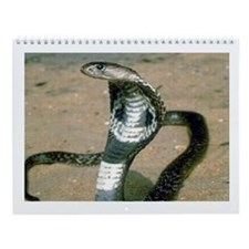 Cobra Nest Wall Calendar