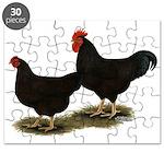 Rhode Island Reds Puzzle
